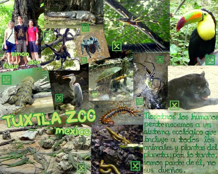 2009-10-14_ZoomatTuxtla