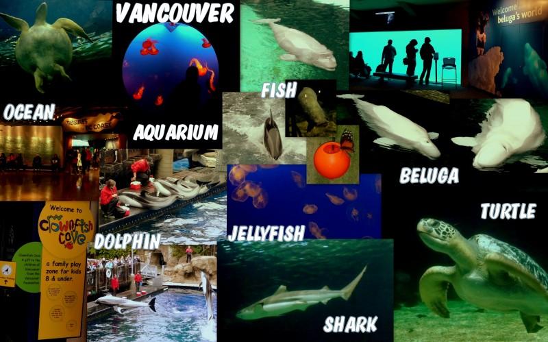 2009_10_01_Canada-Vancouver_AQUARIUM