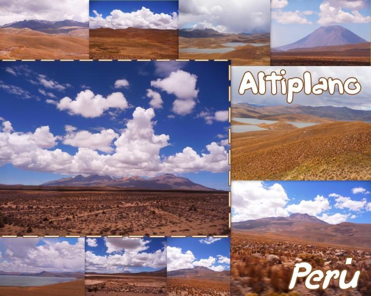 2009-11-15_PEROU_ALTIPLANO