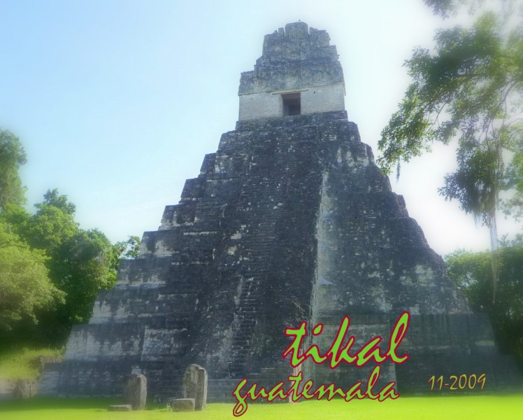 2009-11-guatemala-tikal-coup de coeur