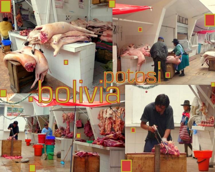 2009-12-31-bolivia-post Potosi market
