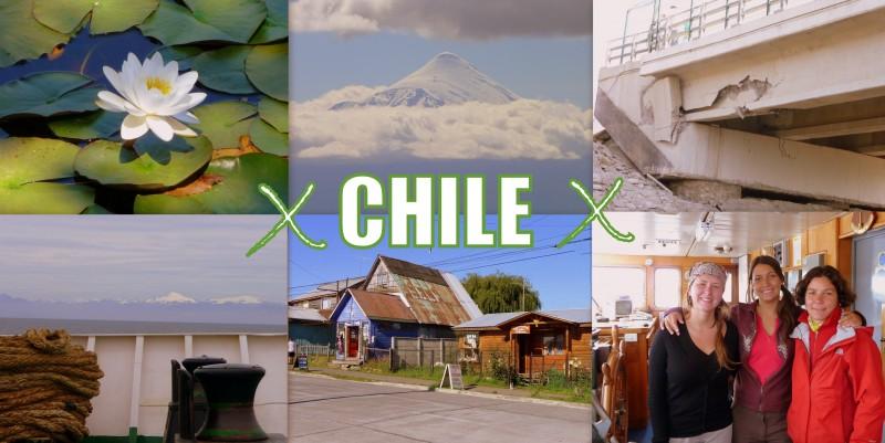 2010_coup de coeur-CHILE
