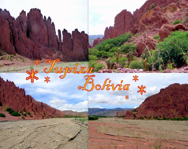 2010-01-05-bolivia-tupiza