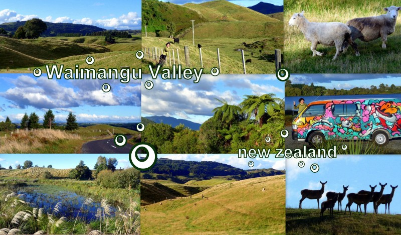 2010-03-25-NZ-WAIMANGU VALLEY