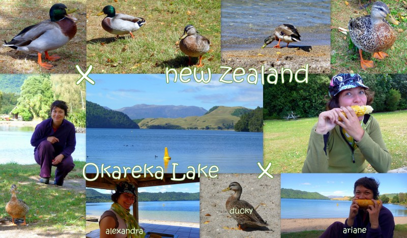 2010-03-26-NZ-okareka lake