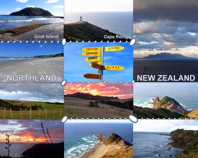 2010-04-07_NZ_GoatIslandMarineReserve