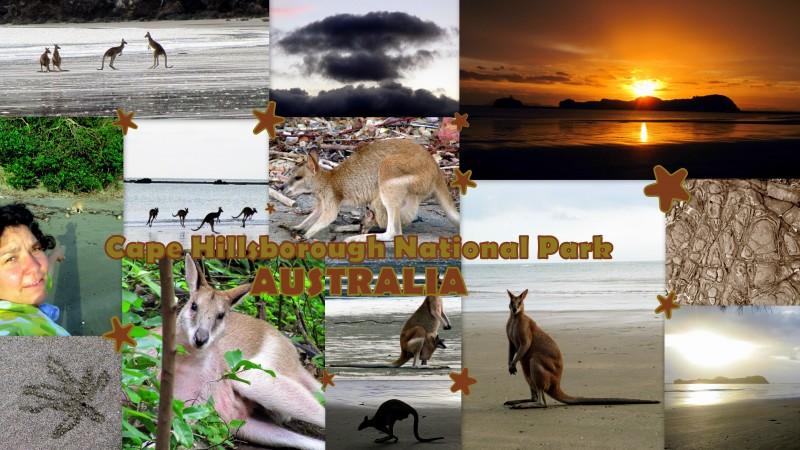 2010-04-28_Australia_CapeHillsboroughSunrise