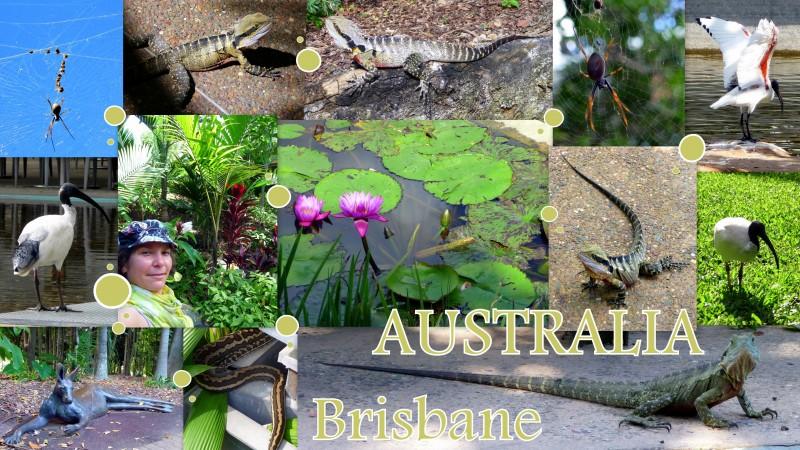 2010-04-AUSTRALIA-brisbane