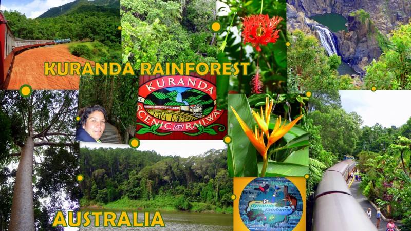 2010-05-08_Australia_Cairns-KurandaRainforest