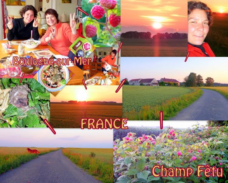 FETU 2010-06 -FRANCE -CHAMP